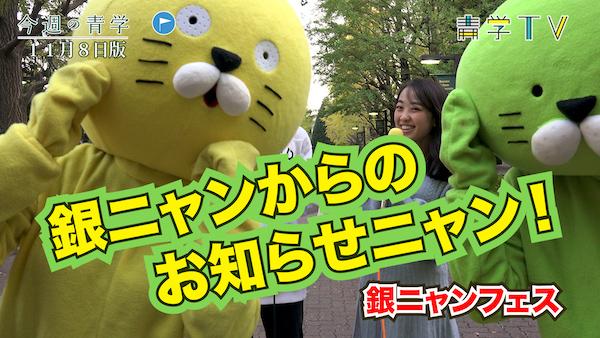 今週の青学20191108_銀ニャン・フェスのお知らせニャン!