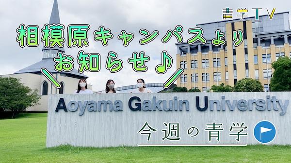 今週の青学「後期スタート!相模原キャンパスより(重要な!!)お知らせ♪」